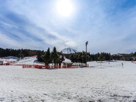 ทัวร์ญี่ปุ่น โตเกียว 6 วัน 4 คืน ลานสกี YETI SKI RESORT  โตเกียว เบย์ อควาไลน์  บิน XW โตเกียว ทัวร์ต้อนรับวันปีใหม่ ทัวร์ต้อนรับเทศกาลวันพ่อ ทัวร์สกีรีสอร์ท โปรไฟไหม้-ทัวร์ไฟไหม้ ทัวร์โตเกียว | ทัวร์ญี่ปุ่น โตเกียว