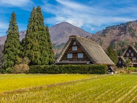 ทัวร์ญี่ปุ่น โอซาก้า เกียวโต ทาคายาม่า 5 วัน 3 คืน หมู่บ้านมรดกโลกชิราคาวาโกะ หน้าผาโทจินโบ บิน XJ โอซาก้า ทาคายาม่า