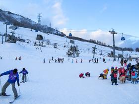 ทัวร์ญี่ปุ่น ฮอกไกโด 6 วัน 4 คืน คิโรโระรีสอร์ท  ขึ้นกระเช้าไปสั่นระฆังบนยอดเขา Asari***พักสกี บิน TG ฮอกไกโด ทัวร์ฮอกไกโด | ทัวร์ญี่ปุ่น ฮอกไกโด