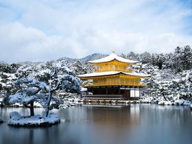 ทัวร์ญี่ปุ่น โอซาก้า โตเกียว 6 วัน 4 คืน กิจกรรมถาดเลื่อนหิมะ ณ ลานสกี  ชิมสตอเบอรี่สดๆจากไร่ บิน TG โอซาก้า โตเกียว