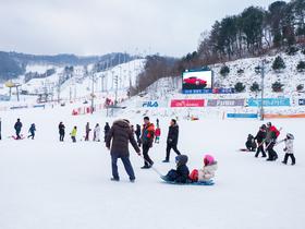 ทัวร์เกาหลี กรุงโซล 5 วัน 3 คืน สนุกสนานกับการเล่นสกี ณ สกีรีสอร์ท ชิมสตอเบอรี่สดๆจากไร่ บิน LJ กรุงโซล