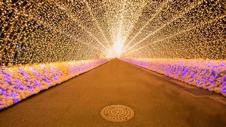 ทัวร์ญี่ปุ่น โอซาก้า ทาคายาม่า 5 วัน 3 คืน เทศกาลแสงสี 'Nabana no Sato  หมู่บ้านมรดกโลกชิราคาวะโกะ เล่นสกี บิน ไทยแอร์เอเชียเอกซ์