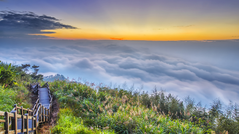 ทัวร์ไต้หวัน ไทจง ไทเป 5 วัน 3 คืน  เที่ยวครบ 3 อุทยาน ล่องเรือทะเลสาบสุริยัน-จันทรา (ชมซากุระช่วงปลายเดือนก.พ – มี.ค) บิน Eva Air
