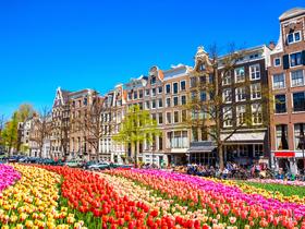 ทัวร์ยุโรป ฝรั่งเศส เบลเยี่ยม ลักเซมเบริก์ เนเธอร์แลนด์ เยอรมัน 8 วัน 5 คืน งานเทศกาลดอกทิวลิป KEUKENHOF 2018 บิน EY เยอรมัน เนเธอร์แลนด์  ลักเซมเบิร์ก ฝรั่งเศส