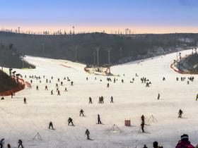 ทัวร์เกาหลี กรุงโซล 5 วัน 3 คืน เล่นสกี ณ สกีรีสอร์ท ชิมสตรอเบอร์รี่จากไร่  บิน  LJ   กรุงโซล