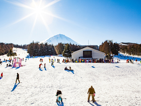 ทัวร์ญี่ปุ่น โตเกียว 6 วัน 3 คืน สนุกสนานกับหิมะสีขาว ณ ลานสกีฟูจิเท็น ชมการแสดงไฟสุดอลังการ 'หมู่บ้านเยอรมัน' บิน TG โตเกียว