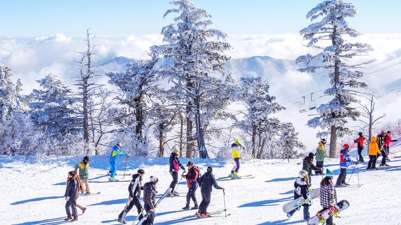 ทัวร์เกาหลี กุรุงโซล 5 วัน 3 คืน เล่นสกีตะลุยหิมะ ณ ลานสกีขนาดใหญ่ ชิมสตรอเบอร์รี่สดๆจากไร่ บิน ไทยแอร์เอเชียเอกซ์