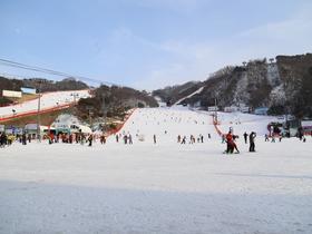 ทัวร์เกาหลี กรุงโซล 4 วัน 3 คืน สนุกสนานกับการเล่นสกี ณ สกีรีสอร์ท   บิน XJ  กรุงโซล