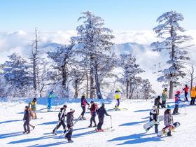 ทัวร์เกาหลี กรุงโซล 5 วัน 3 คืน สนุกสนานกับหิมะApril Snow Festival 2018  เทศกาลดอกซากุระยออิโด บิน TG  กรุงโซล
