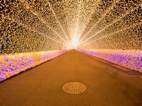 ทัวร์ญี่ปุ่น โตเกียว โอซาก้า 6 วัน 3 คืน หมู่บ้านมรดกโลกชิราคาวาโกะ  งานประดับไฟ NABANA NO SATO  เล่นสกี [เฉพาะกรุ๊ปที่เดินช่วง มกราคม - 15 มีนาคม] บิน JL  โตเกียว โอซาก้า