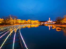 ทัวร์ญี่ปุ่น โอซาก้า โตเกียว  5 วัน 4 คืน นาบานะโนะซาโตะ  TMG หรือ สวนอูเอโนะ  บิน XJ  โอซาก้า โตเกียว