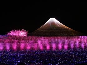 ทัวร์ญี่ปุ่น โตเกียว โอซาก้า 7 วัน 5 คืน เทศกาลไฟประดับ 'นาบานาโนะ ซาโตะ' ชมวิวหอคอยโตเกียวสกายทรี สวนสตรอเบอร์รี่ บิน TG โตเกียว โอซาก้า