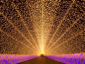 ทัวร์ญีปุ่น ทาคายาม่า นาโกย่า  5 วัน 3 คืน เทศกาลนาบานาโนะ ซาโตะ หมู่บ้านชิราคาวาโกะ บิน JL  นาโกย่า ทาคายาม่า