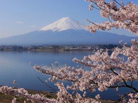 ทัวร์ญี่ปุ่น โตเกียว 5 วัน 3 คืน ภูเขาไฟฟูจิ หมู่บ้านโอชิโนะฮักไก บิน XJ โตเกียว