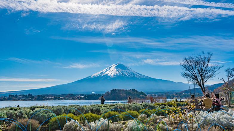 ทัวร์ญี่ปุ่น โตเกียว 4 วัน 3 คืน ภูเขาไฟฟูจิ(ชั้น5) สวนโออิชิปาร์ค บิน ไทยแอร์เอเชียเอกซ์
