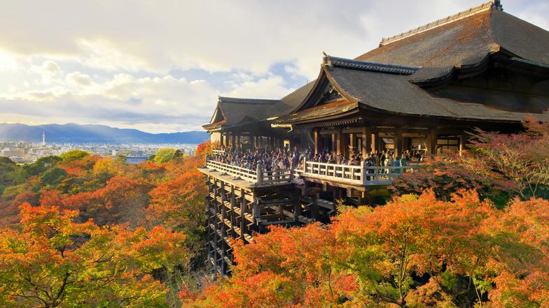 ทัวร์ญี่ปุ่น โอซาก้า ทาคายาม่า 5 วัน 3 คืน วัดน้ำใสคิโยมิสึ หมู่บ้านชิราคาวาโกะ ศาลเจ้าฟูชิมิอินาริ บิน ไทยแอร์เอเชียเอกซ์