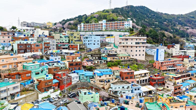 ทัวร์เกาหลี ปูซาน โซล 5 วัน 3 คืน หมู่บ้านพื้นเมืองชอนจูฮันอก ขึ้นหอชมวิวSky Seoul  บิน การบินไทย